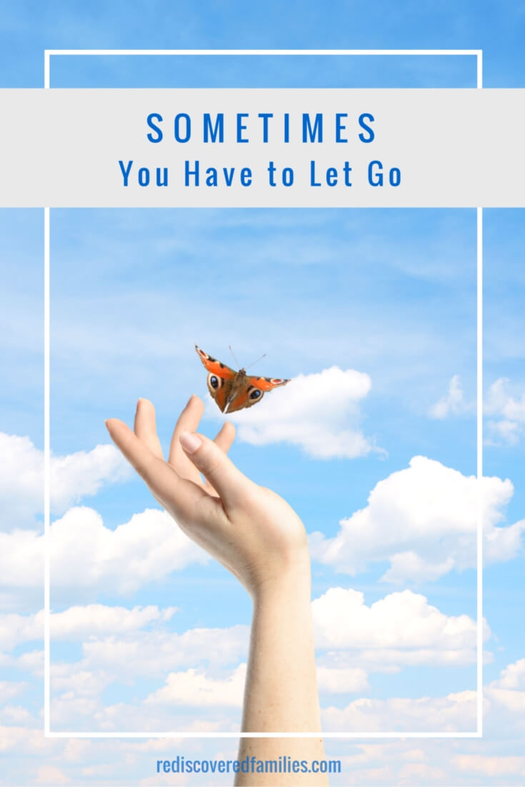 "Sometime You Have to Let Go - It is easy to be distracted by the ""You shoulds"" and the ""You musts."" We parents all have ideas about we should and shouldn't do. It is possible to become so preoccupied with those ideas that spending time with our kids can be put on hold. Sometimes we have to let go, so we can focus on the important things like building connection, having fun, and making memories."