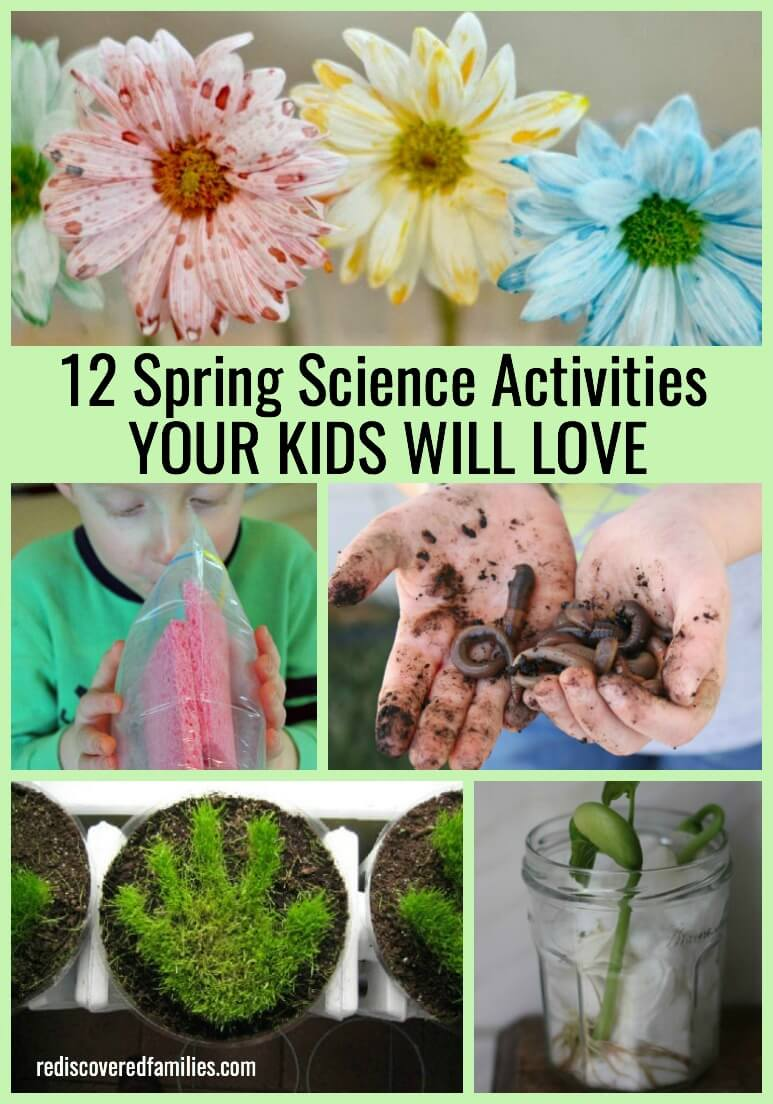 12 Spring Science Activities Your Kids Will Totally Love